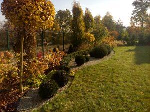 zakładanie ogrodów Rzeszów