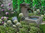 ogród histowyczny