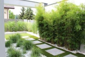 zakładanie trawników kraków