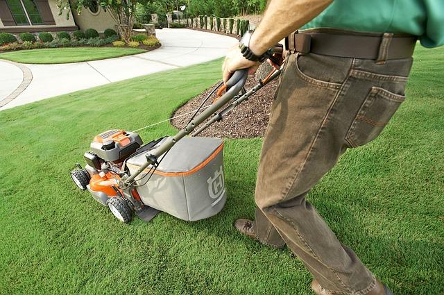 Pielęgnacja trawnika po zimie – jakie zabiegi wykonać?