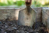 Etapy zakładania ogrodu – krok po kroku