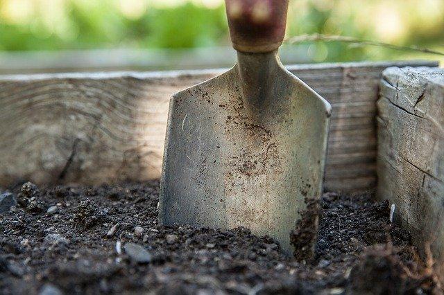 Etapy zakładania ogrodu - krok po kroku