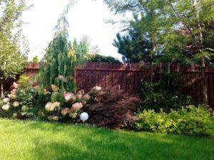 gra kolorów na rabacie, dobrze zaprojektowany ogród