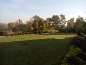 ogród z pomysłem katowice