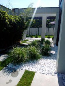 ogród traw i bambusów ogrody nowoczesne