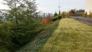 ogrody współczesne