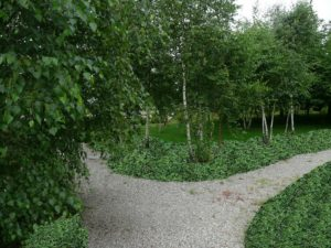 Wykonawstwo ogrodów, Kraków, Wieliczka, Wadowice.