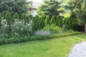 Zakładanie trawników Wieliczka